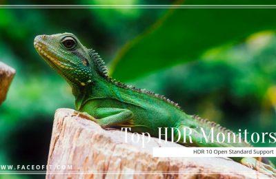 Top HDR Gaming Monitors