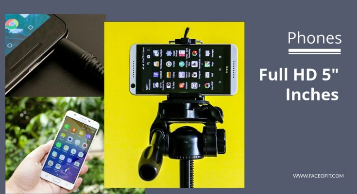 5 Inch Phone Full HD Display