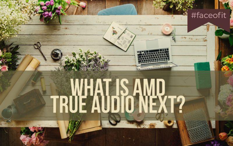 What is AMD True Audio Next