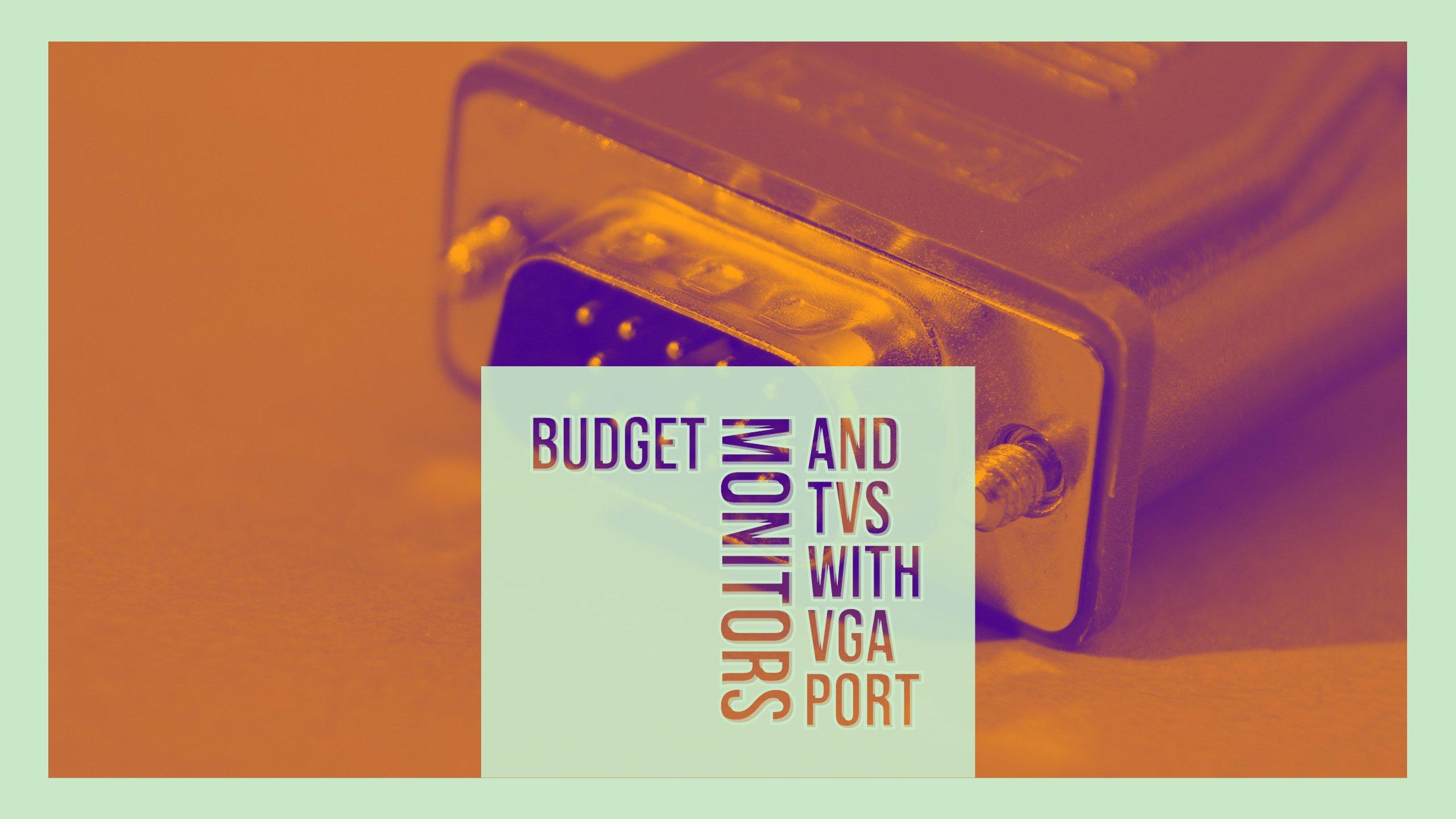 Budget Monitors and TVs with VGA port